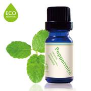 6. FaceSchool 有機薄荷精油/10mL